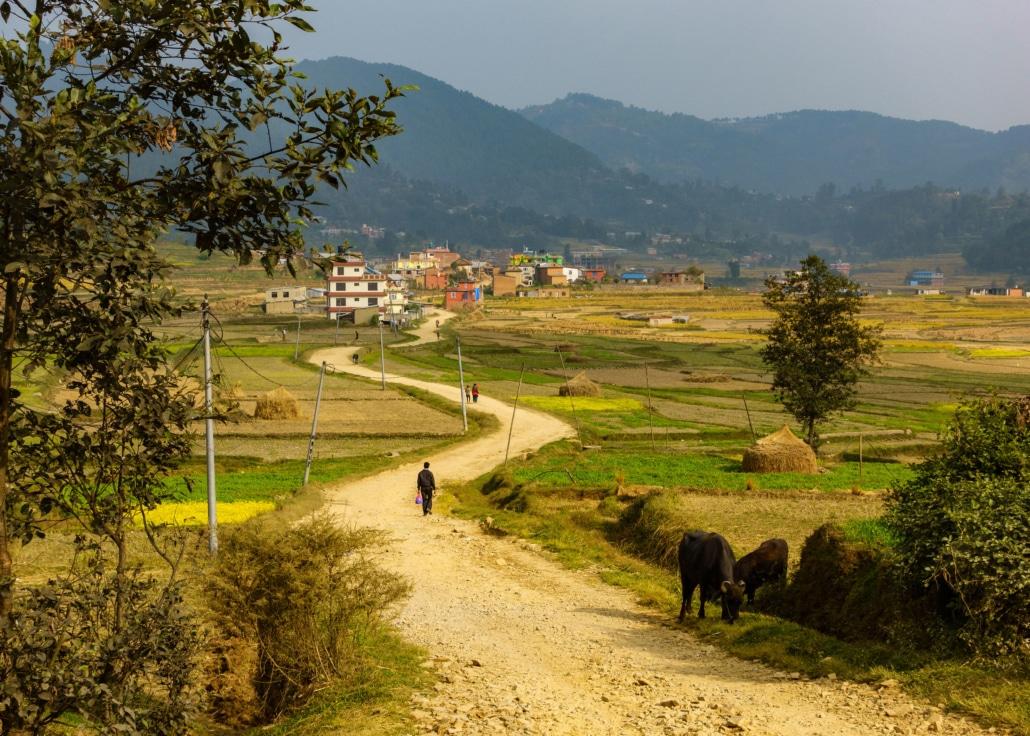 Chemin vers le village de Sankhu