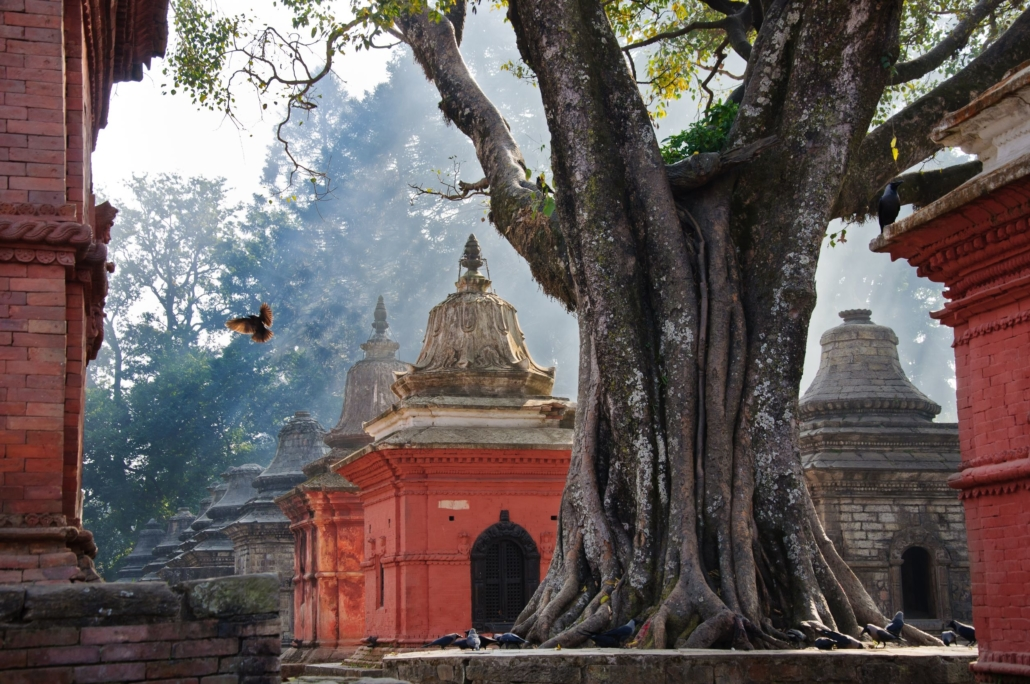 Temple hindouiste de Pashupatinath